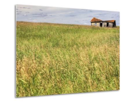 A Log Cabin Collapses into the Prairie Landscape-Pete Ryan-Metal Print