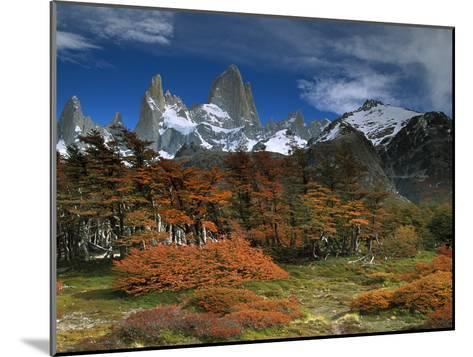 Mount Fitzroy and Lenga Beech (Nothofagus Pumilio) Trees, Los Glaciares National Park, Argentina-Colin Monteath/Minden Pictures-Mounted Photographic Print