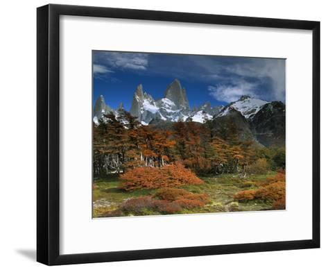 Mount Fitzroy and Lenga Beech (Nothofagus Pumilio) Trees, Los Glaciares National Park, Argentina-Colin Monteath/Minden Pictures-Framed Art Print