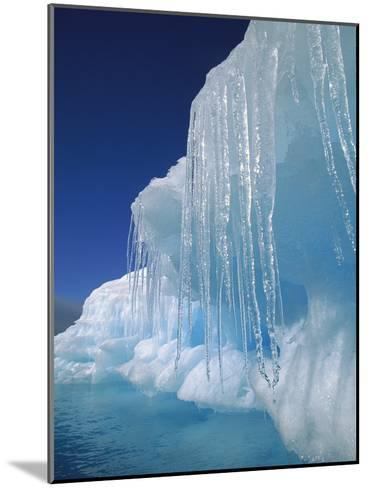 Icicles Hanging from Iceberg, Petermann Island, Antarctic Peninsula, Antarctica-Colin Monteath/Minden Pictures-Mounted Photographic Print