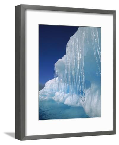 Icicles Hanging from Iceberg, Petermann Island, Antarctic Peninsula, Antarctica-Colin Monteath/Minden Pictures-Framed Art Print