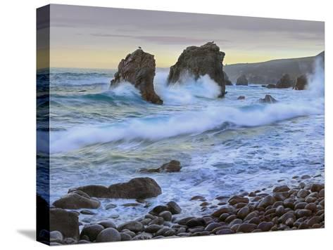 Cove and Seastacks Near Garrapata State, Beach Big Sur, California-Tim Fitzharris/Minden Pictures-Stretched Canvas Print
