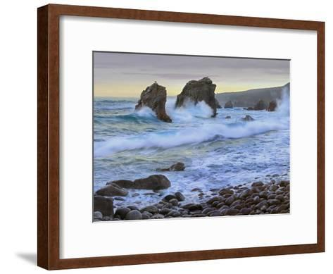 Cove and Seastacks Near Garrapata State, Beach Big Sur, California-Tim Fitzharris/Minden Pictures-Framed Art Print