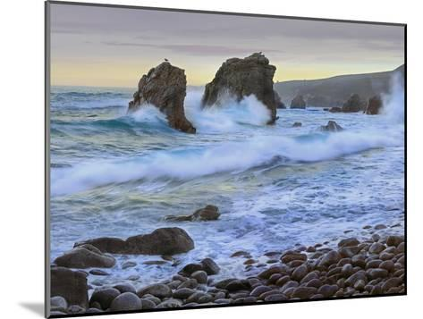 Cove and Seastacks Near Garrapata State, Beach Big Sur, California-Tim Fitzharris/Minden Pictures-Mounted Photographic Print