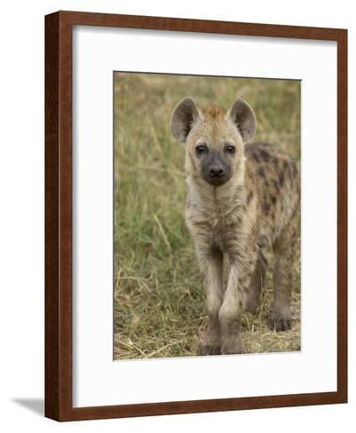 Spotted Hyena (Crocuta Crocuta) Portrait, Masai Mara Reserve, Kenya-Suzi Eszterhas/Minden Pictures-Framed Art Print