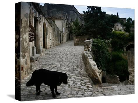 A Dog on a Cobbled Walkway in Baux De Provence-AJ Wilhelm-Stretched Canvas Print