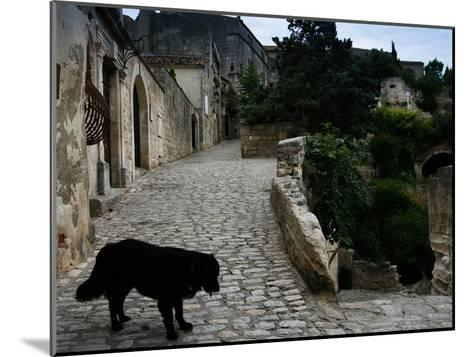 A Dog on a Cobbled Walkway in Baux De Provence-AJ Wilhelm-Mounted Photographic Print