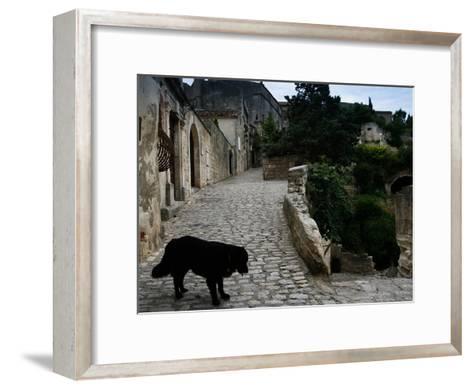 A Dog on a Cobbled Walkway in Baux De Provence-AJ Wilhelm-Framed Art Print