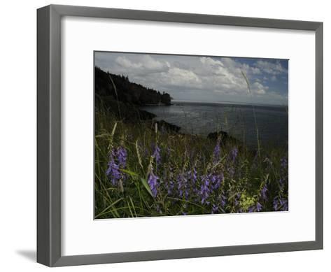 Cliffs and Flowers in the Bay of Fundy Area in Cape Breton-Karen Kasmauski-Framed Art Print