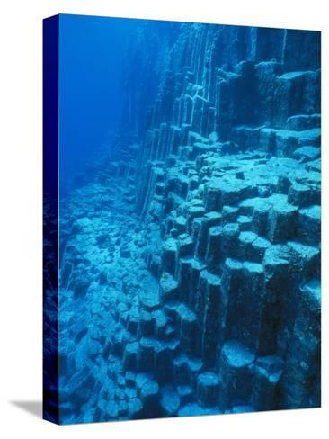 An Underwater Geological Formation, Galapagos Islands-Mauricio Handler-Stretched Canvas Print