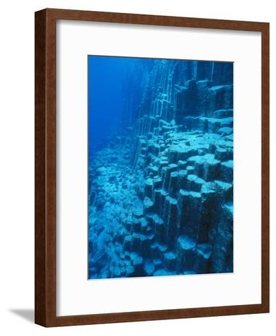 An Underwater Geological Formation, Galapagos Islands-Mauricio Handler-Framed Art Print