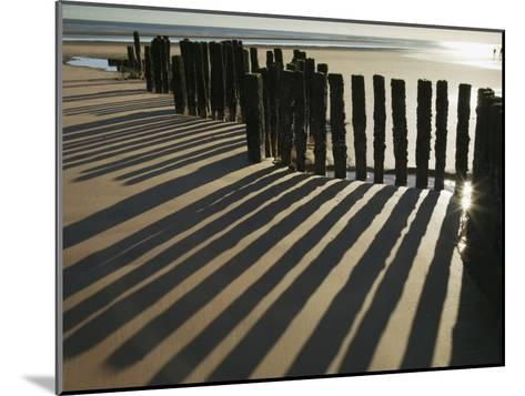Silhouette of the Remains of a Groyne on the Beach at Dawlish Warren-Nigel Hicks-Mounted Photographic Print
