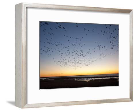 Dawn over the Atlantic Ocean-Karen Kasmauski-Framed Art Print