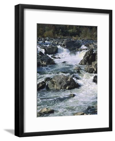 A Great Blue Heron Fishing from the Rocks at Great Falls-Bates Littlehales-Framed Art Print