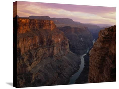 Colorado River in the Grand Canyon-Danny Lehman-Stretched Canvas Print