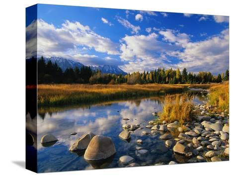 Snake River-Ron Watts-Stretched Canvas Print