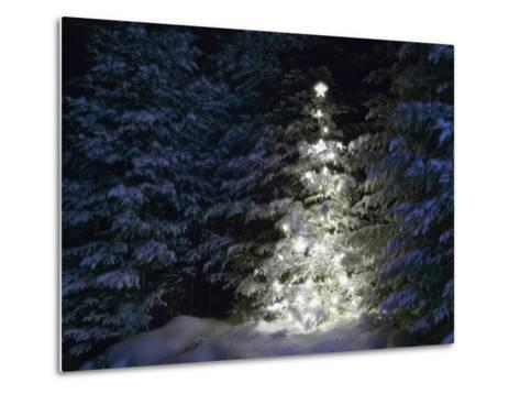 Illuminated Christmas Tree in Snow-Larry Williams-Metal Print