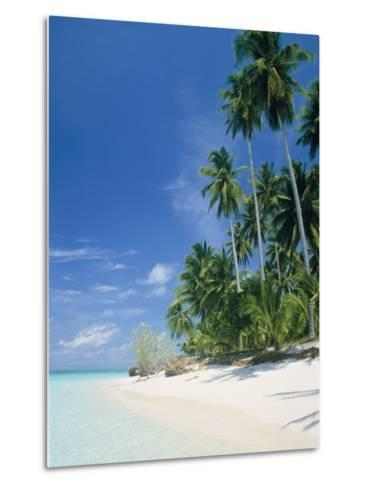 Beach with palms and clear sea, Malaysia, Mabul Island-Sergio Pitamitz-Metal Print