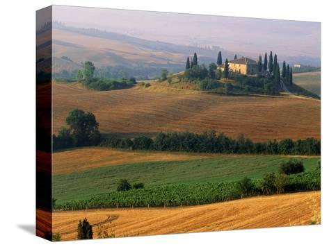Italy, Tuscany, Val d'Orcia, fields at sunrise-Sergio Pitamitz-Stretched Canvas Print
