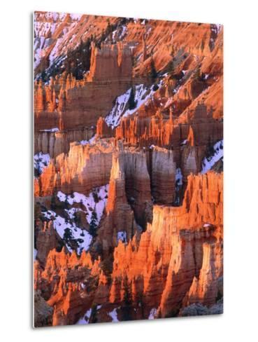 USA, Utah, Bryce Canyon with snow-Theo Allofs-Metal Print