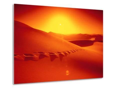 Footprints in desert-Frank Krahmer-Metal Print