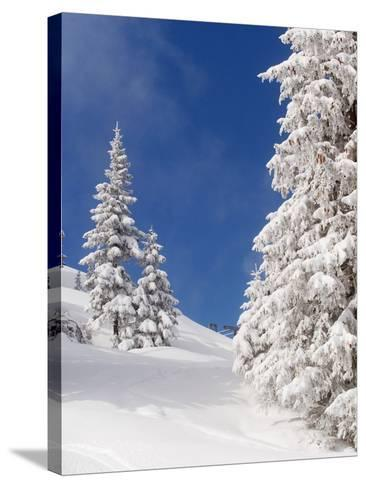 Snowcovered landscape--Stretched Canvas Print