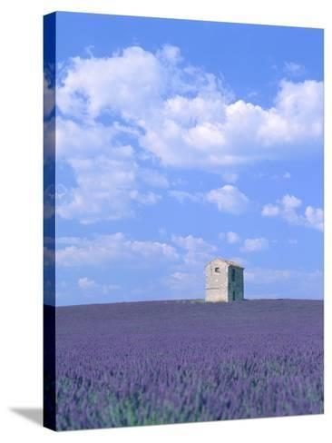 Blooming lavender and stone house in France-Herbert Kehrer-Stretched Canvas Print