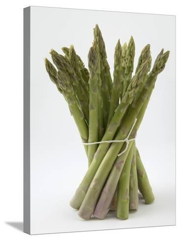 Bunch of Asparagus--Stretched Canvas Print