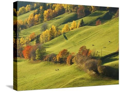 Pastures in St. Magdalena-Sergio Pitamitz-Stretched Canvas Print