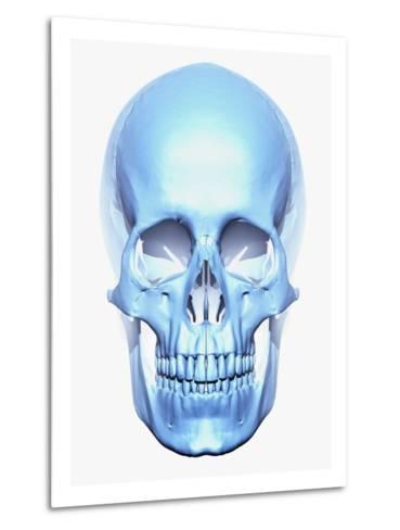 Skull-Matthias Kulka-Metal Print