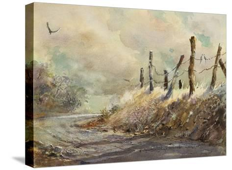 Posts in Sunshine-LaVere Hutchings-Stretched Canvas Print