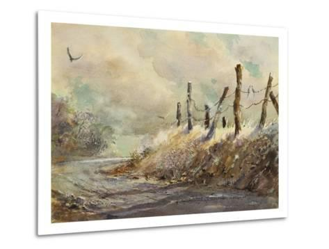 Posts in Sunshine-LaVere Hutchings-Metal Print