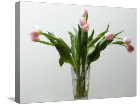 Flower Arrangement--Stretched Canvas Print