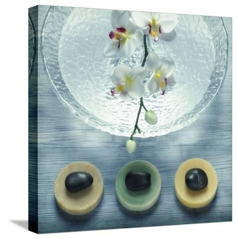 Bowl of Water and Soaps--Stretched Canvas Print