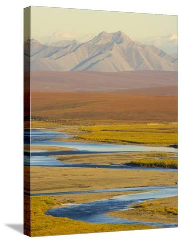 Mountains and Winding River in Tundra Valley-John Eastcott & Yva Momatiuk-Stretched Canvas Print