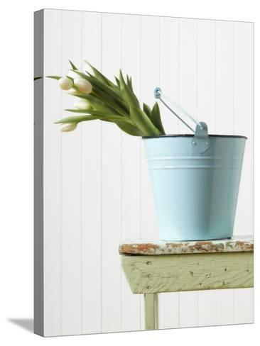 Bouquet of White Tulips in Bucket--Stretched Canvas Print
