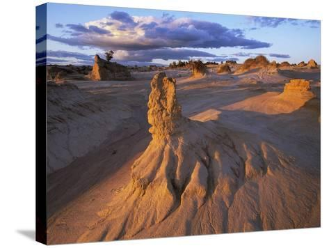 Rock Formations in Mungo National Park-Theo Allofs-Stretched Canvas Print