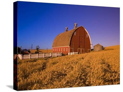 Wheat Field and Barn at Sunrise-Craig Tuttle-Stretched Canvas Print