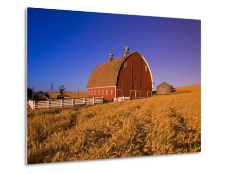Wheat Field and Barn at Sunrise-Craig Tuttle-Metal Print