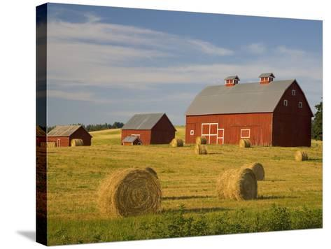 Barns and Hay Bales in Field-Darrell Gulin-Stretched Canvas Print