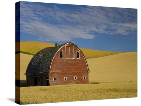 Red Barn in Wheat Field-Darrell Gulin-Stretched Canvas Print