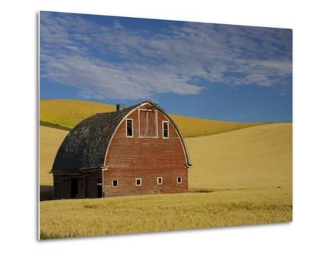 Red Barn in Wheat Field-Darrell Gulin-Metal Print