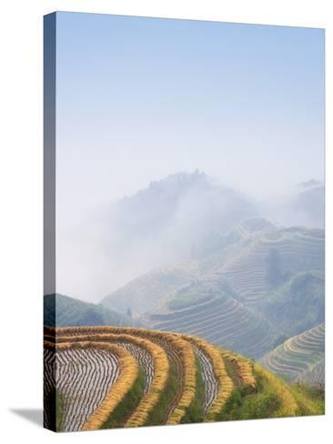 Rice Growing on Terraced Fields on Mountain Slopes-Keren Su-Stretched Canvas Print