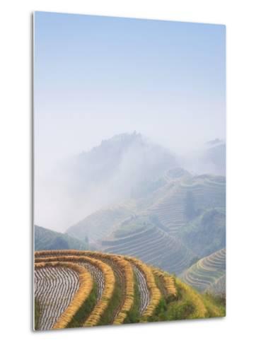 Rice Growing on Terraced Fields on Mountain Slopes-Keren Su-Metal Print