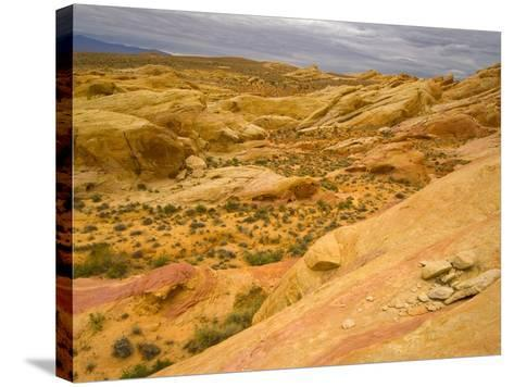 Sandstone Formations in Valley of Fire-John Eastcott & Yva Momatiuk-Stretched Canvas Print