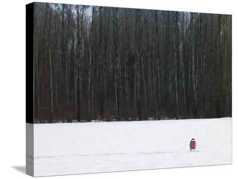 Football in Snow Covered Field--Stretched Canvas Print