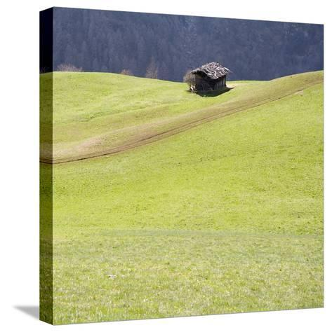 Mountain Cabin-Parque-Stretched Canvas Print
