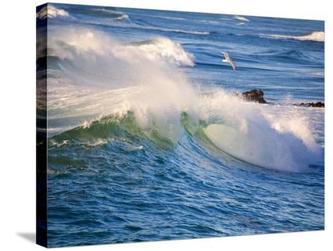 Heavy Surf off Cape Kiwanda on Oregon Coast-Craig Tuttle-Stretched Canvas Print