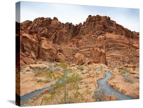 Rural Trail Through Desert-Beathan-Stretched Canvas Print