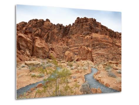 Rural Trail Through Desert-Beathan-Metal Print